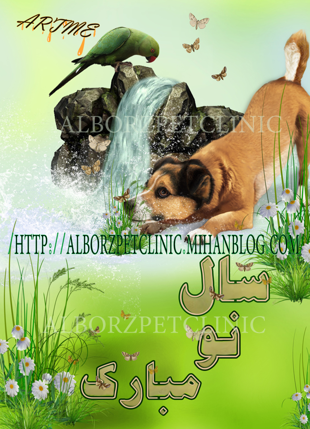 http://artme.persiangig.com/image/artme%20new/alborz%20pet/sale%20now%20a%20%281%29.jpg