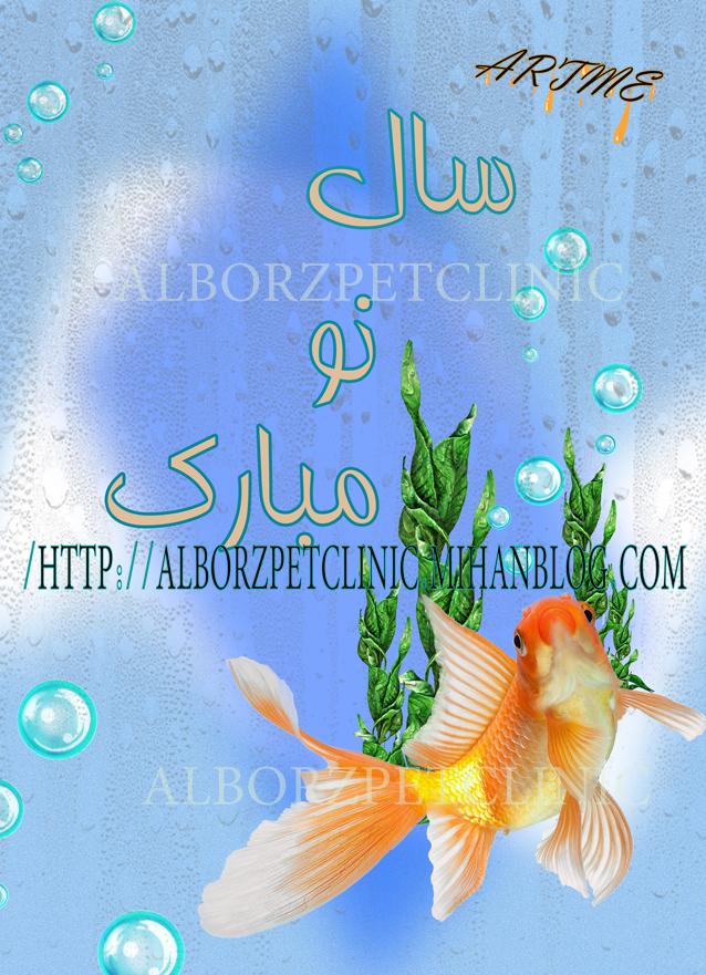 http://artme.persiangig.com/image/artme%20new/alborz%20pet/sale%20now%20a.jpg